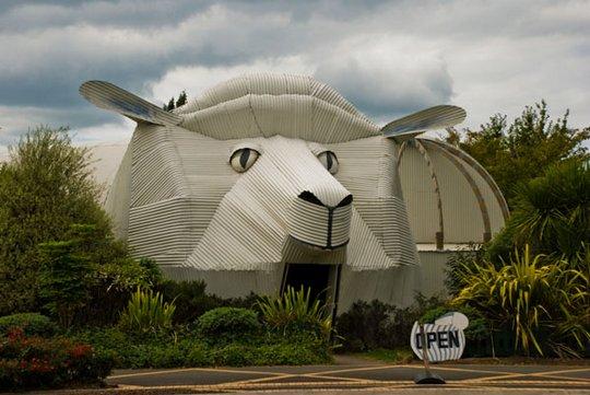 44 здание собаки новая зеландия
